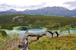 Emerald Lake located on the south Klondike Highway on Westmark Hotels Alaska/Yukon