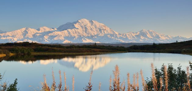 Denali reflected in a pond