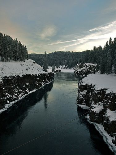 Snow and snow covered trees on each side of Miles Canyon with Yukon river flowing through Whitehorse.