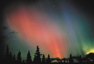 Spectacular pink, green and blue of the Northern Lights Aurora Borealis in the Fairbanks Alaska night sky