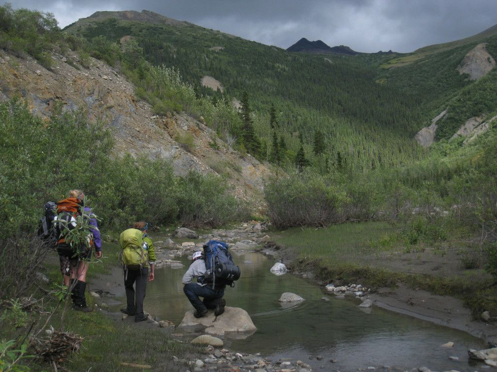 Hikers in Southeast Alaska