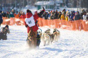 Present day Iditarod Dog sled and team Westmark Hotels Alaska & the Yukon